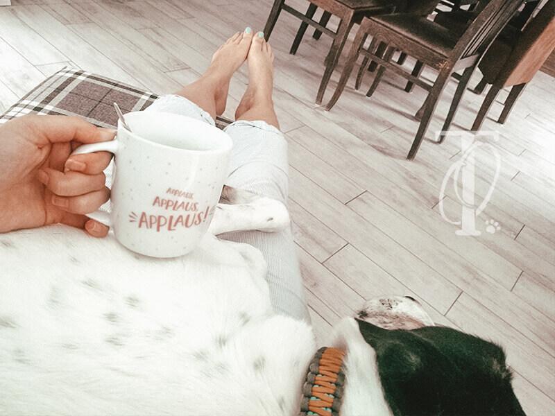 Auszeit mit Hund vom Alltag