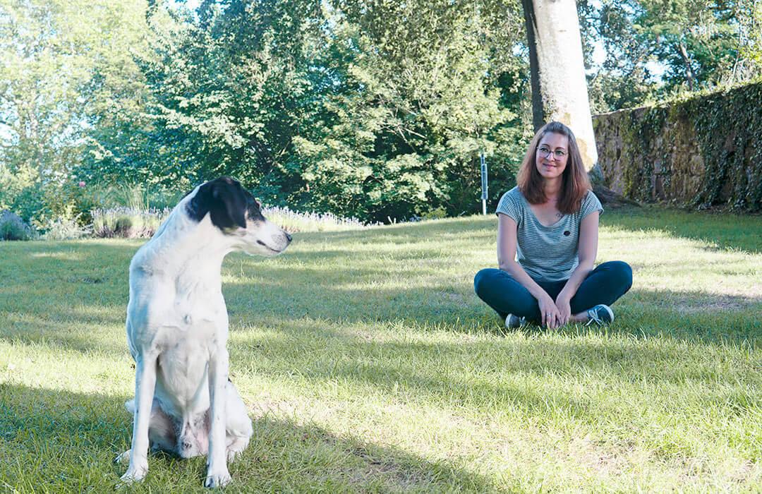 Schönes Leben als Hund