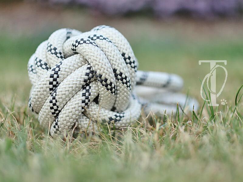 Hundespielzeug selbermachen: Einen Ball aus Kletterseil knote