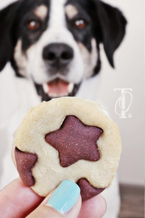 DIY: Tolle Schwarz-Weiß-Kekse für deinen Hund backen
