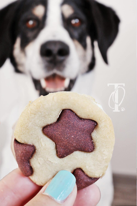 Rezept: Schwarz-Weiß-Kekse für Hunde backen