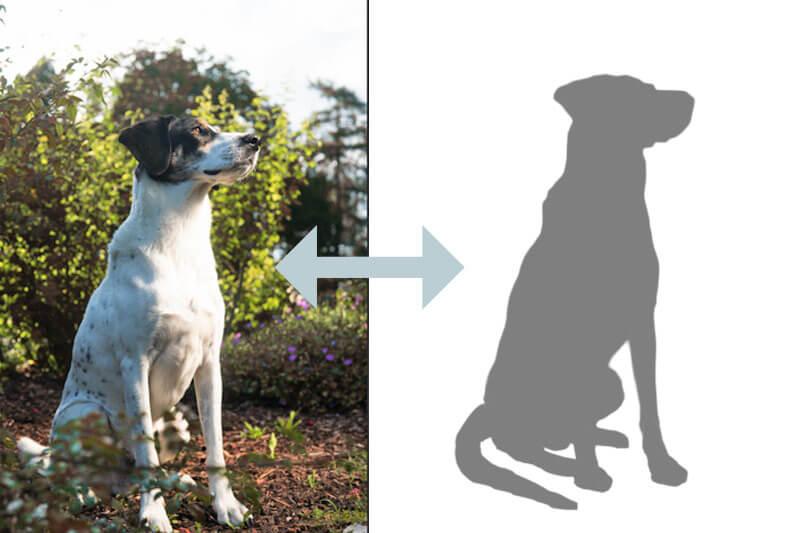 Der eigene Hund als Vorlage für das Fadenbild