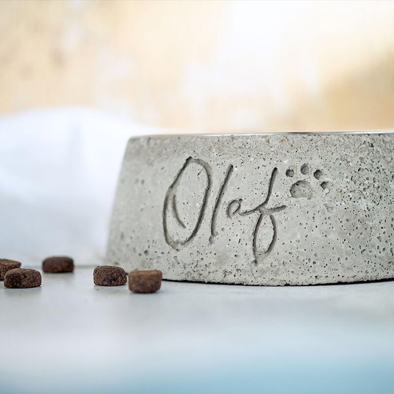 Hundenapf aus Beton selber machen