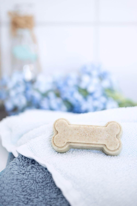 Festes Hundeshampoo für Hunde selbermachen
