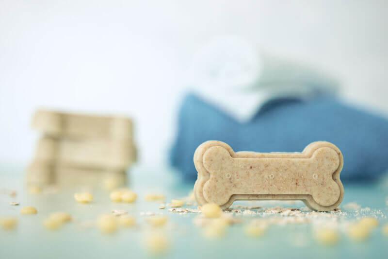 Seife für Hunde aus 3 Zutaten selbermachen