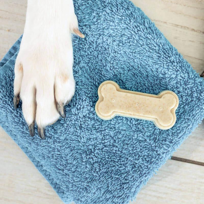 Hundeseife für dreckige Hundepfoten