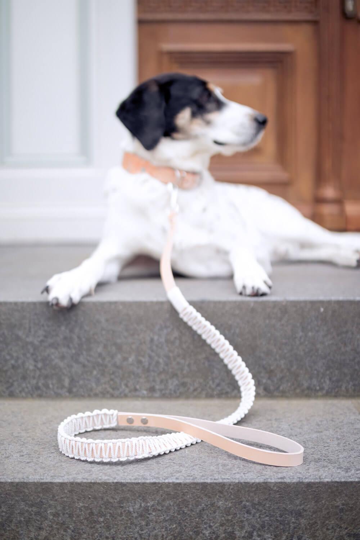 DIY Hundeleine mit Makramee knoten