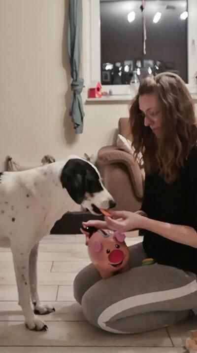 Unser neuer Trick - Clickertraining mit Hund
