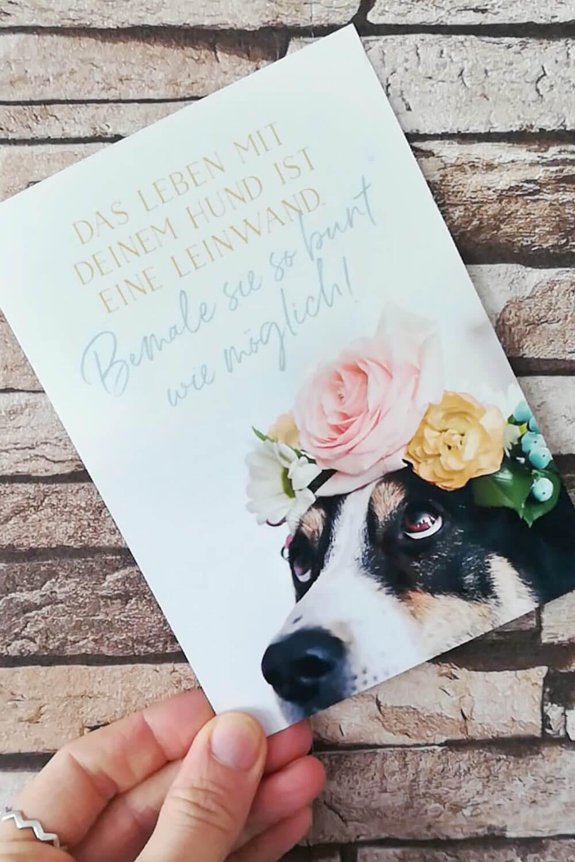 Hundepost-Aktion auf Instagram mit Postkarte von Herr Olaf